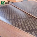 null - brown film faced plywood