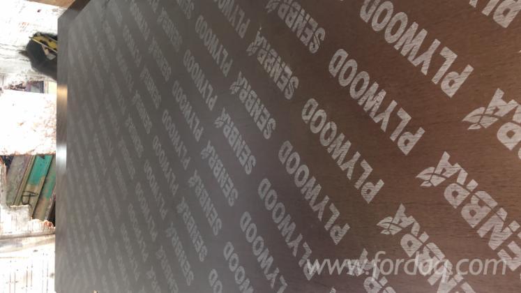 Vender Compensado Filmado (filme Preto) 18 mm