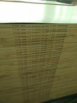 Find best timber supplies on Fordaq - Qingdao Feima international trading co.,ltd - Radiata Pine Solid Wood Panel (FJ), 18 mm
