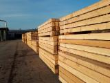 Permanent Position Forestry Job - Production Sawmill (Permanent Position) - France