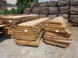 Finden Sie Holzlieferanten auf Fordaq - MUNICH RESIDENCE SRL - Bretter, Dielen, Eiche, Roteiche