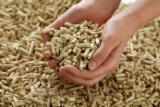 Pine - Scots Pine Firewood, Pellets And Residues - Pine Wood Pellets, 6/8 mm