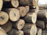 White Ash Saw Logs (3SC+), 7-13'