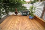Silvertop Ash Sawn Lumber, 19-200 mm