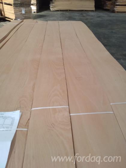 Sliced Natural Beech Veneer Door Size from Direct Manufacturer