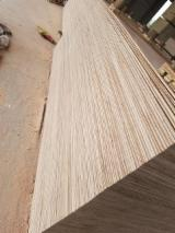 Commercial Plywood, Okoume Face and Back