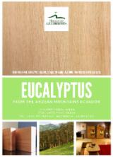 KD Eucalyptus Planks, 20x200 mm