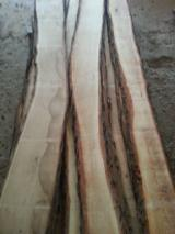 Oak Loose For Sale, KD, 18 mm Thick