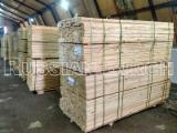 Russian Birch Furniture Grade Application Lumber, 22 & 25 mm