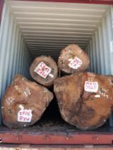 Wacapou/Basralocus/Apazeiro Industrial Logs, 50+ cm