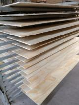 Pine Commercial Plywood (UV), 2440/2500 mm