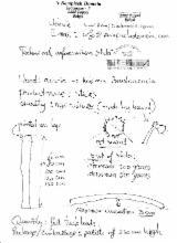 Komponenty Z Drewna, Listwy, Drzwi & Okna, Domy - Trzonek Do Miotły I Inne Trzonki
