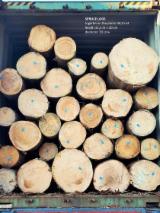We Supply Spruce Saw Logs, Diameter 30 cm
