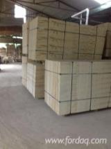 Bintangor Construction Plywood, 2-30 mm