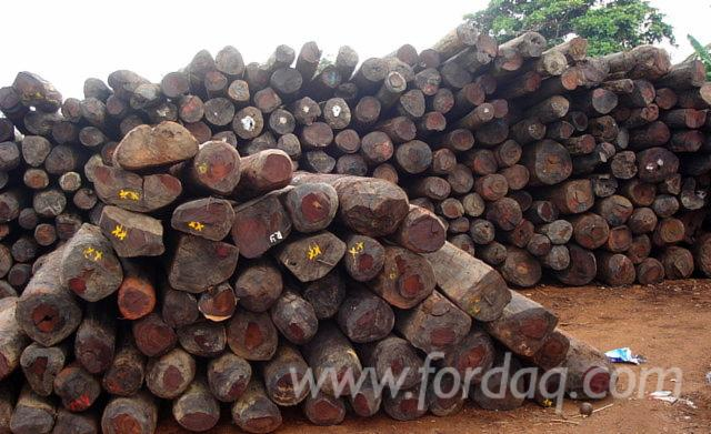 African-Rosewood-Saw-Logs