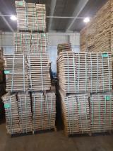 KD Oak Strips, FSC, 26x50-80 mm