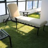 Aluminium Foldable Beech/Swimming Pool Chair (Hotel Furniture)