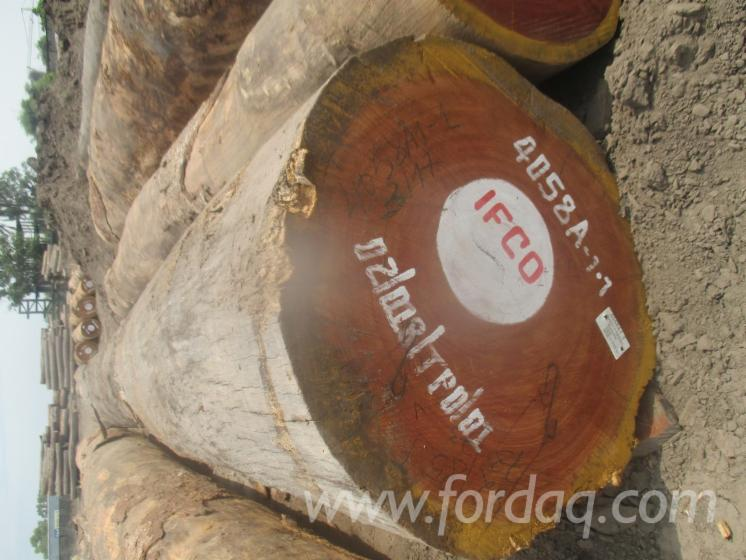 Vend-Grumes-De-Sciage-Doussie-R%C3%A9p-D%C3%A9m-Congo