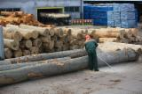 Hardwood  Unedged Timber - Flitches - Boules White Ash - KD White Ash/Beech/Oak Loose, 26-70 mm