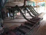 Stacja Sortowania Drewna BFB TRASPORTATORI A RULLI Używane Włochy