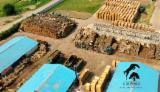 drewno kominkowe brzoza - birch firewood from Poland