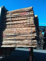 Beech Lumber 20 ABC, Unedged, KD, lightly steamed - Germany