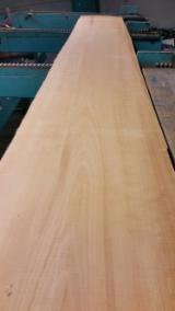 Beech Lumber 55 A, Unedged, KD, lightly steamed - Germany