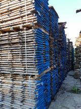 Finden Sie Holzlieferanten auf Fordaq - Latifoglia Srl - Blockware, Eiche