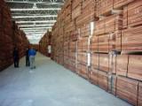 AD Sapelli Planks, FAS, 2.20+ m