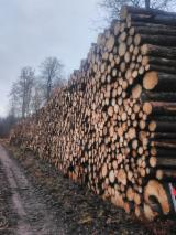 Spruce Industrial Logs, 10+ cm