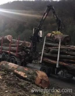 Transport-forestier-cu