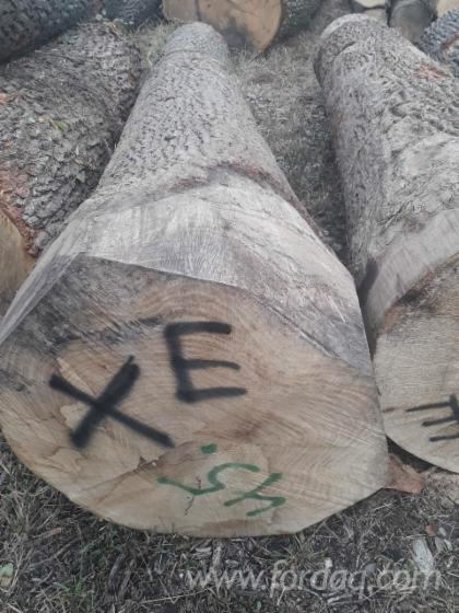 White-Ash-Veneer-Logs