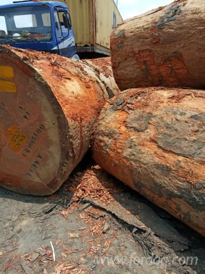Azobé Industrial Logs, 100+ cm