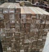 Vend Eléments Aboutés Acacia Vietnam