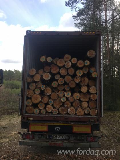 Pine Saw Logs (Poland), 5.8/11.8 m