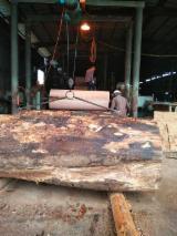 Full Okoumé Natural Plywood (Gabon), 4-30 mm