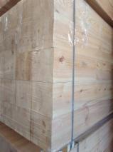 Belki Klejone Proste, Sosna Zwyczajna - Redwood