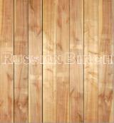 Drewno Lite, Brzoza, Panele Ścienne Wewnętrzne