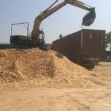 Firewood, Pellets And Residues - Pine Wood Chips (Sawmill), 500 ton/spot