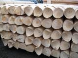 High Quality Pine Poles with Drilling, 5-18 cm