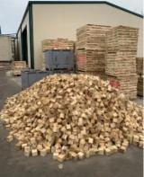 Embalagens de madeira Álamo, Clone I214 À Venda
