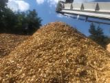 Pine Wooden Chips (Heating), 1000 m3/spot
