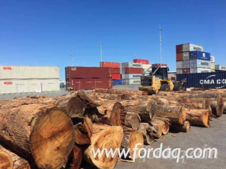 Vend-Grumes-De-Sciage-PEFC-FFC-Western-Australia