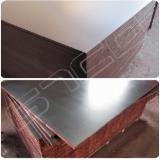 Poplar Black Film Faced Laminated Plywood, 9-21 mm