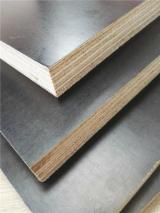 Hardwood Brown Film Faced Plywood, 9-21 mm