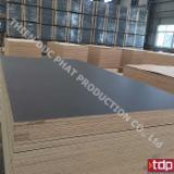 Vietnam Black Laminated Plywood (High Quality), 12-25 mm