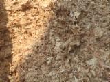 Eucalyptus Wood Shavings, 27 ton/spot
