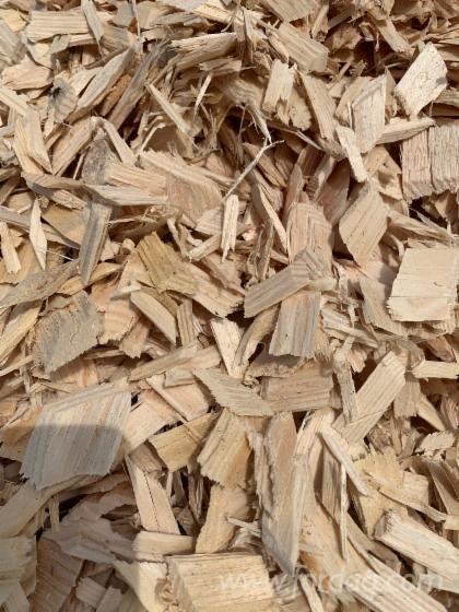 Vender Lascas De Madeira Da Serraria Pinus - Sequóia Vermelha, Abeto - Whitewood Letônia