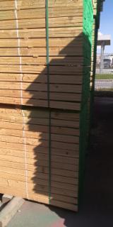 Fir/Spruce Sawn Lumber (Mini Bundles), 22+ mm