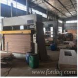 Woodworking Machinery - New GTCO Door Press Machine, 50T (Pressure)